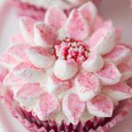 Looking for a super easy and fun holiday project? This simple technique for making beautiful poinsettia cupcakes will wow everyone! There's also a recipe for the best (and easiest ) chocolate cupcake recipe you'll ever have the pleasure of meeting!