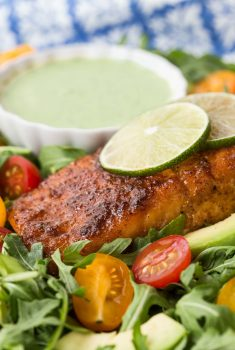 Vertical picture of Mexican Sugar Seared Salmon with dressing and salad