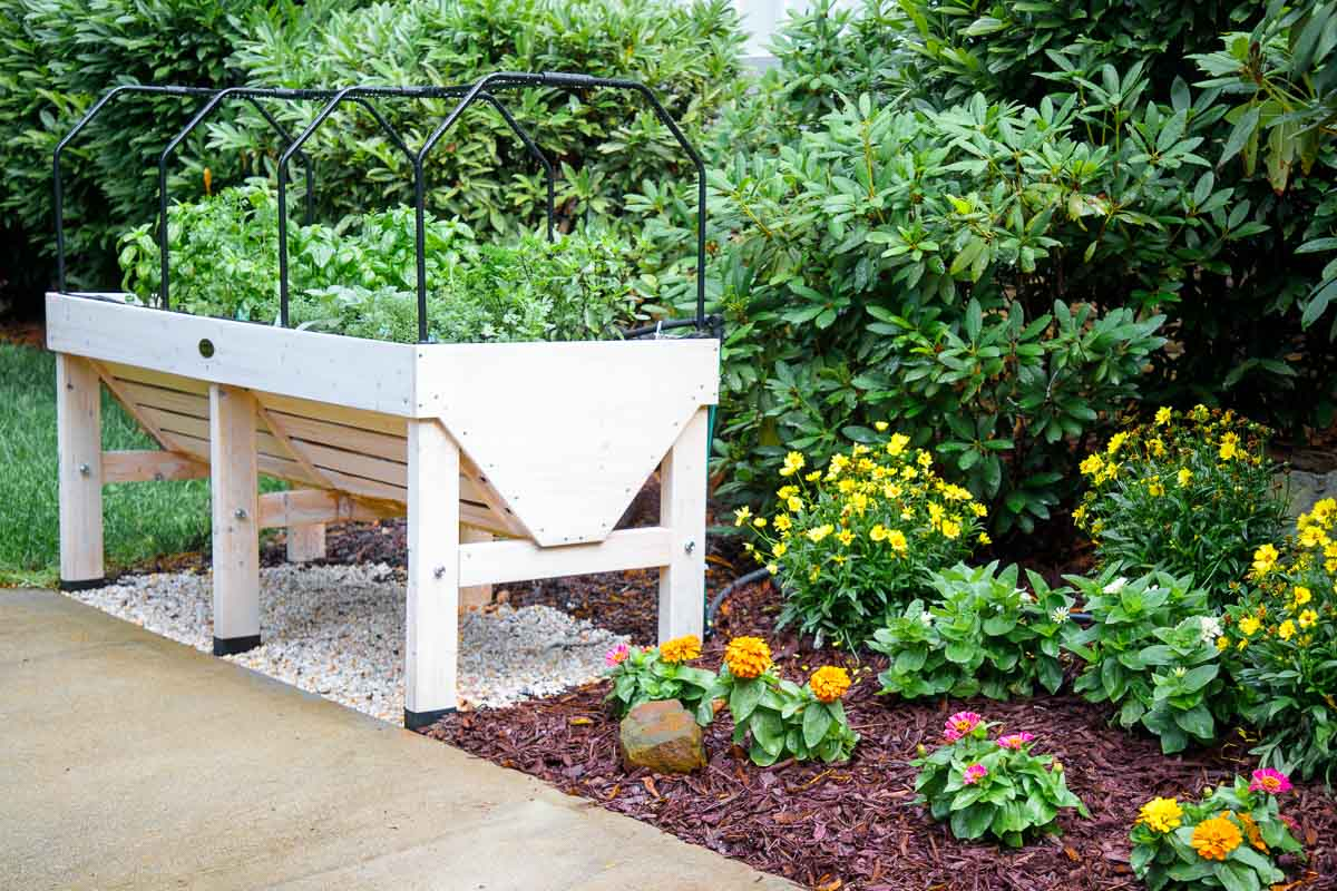 Outdoor vertical photo of a Veg Trug elevated raised bed garden system and a flower cutting garden.