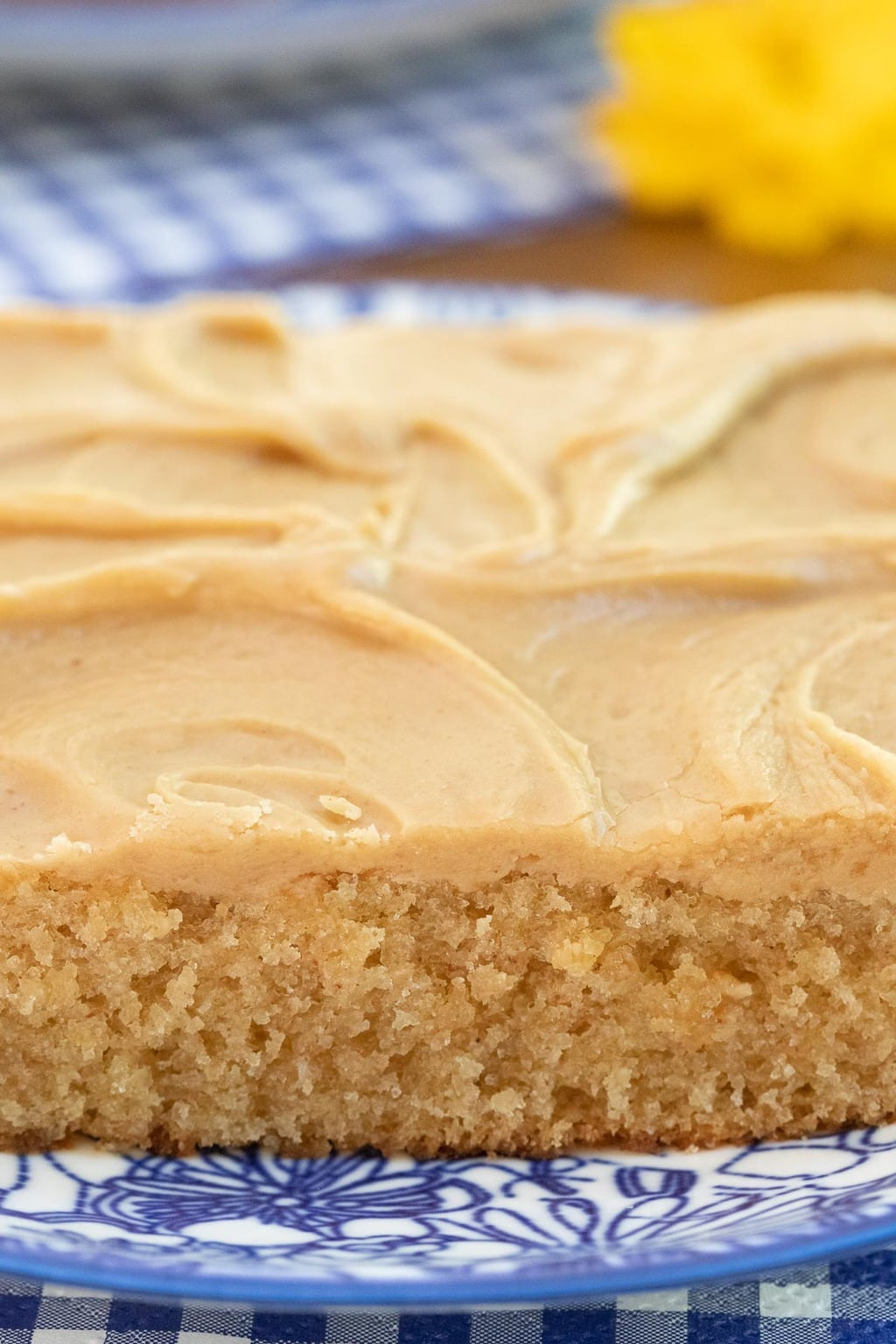 Vertical closeup photo of a slice of Peanut Butter Texas Sheet Cake on a blue and white patterned serving plate.