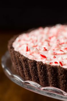 Close up vertical picture of candy cane tart