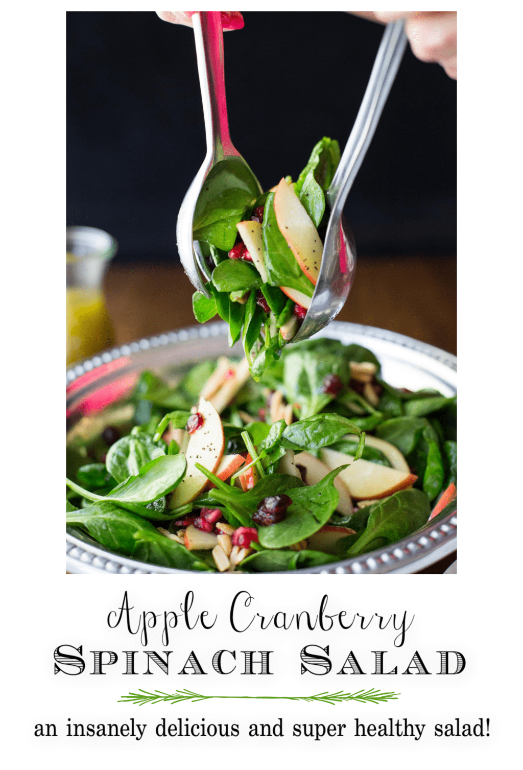 Apple Cranberry Spinach Salad