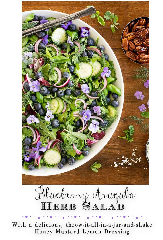Blueberry Arugula Herb Salad