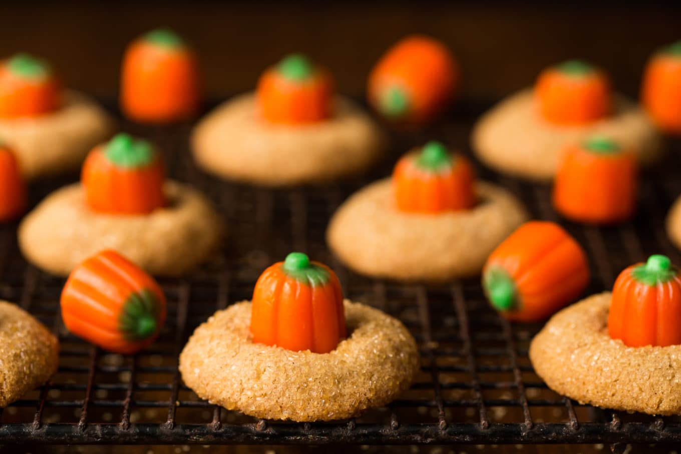 Need a delicious, sweet snack for an autumn party or a Halloween celebration? These Pumpkin Shortbread Cookies are the perfect, delicious solution! thecafesucrefarine.com
