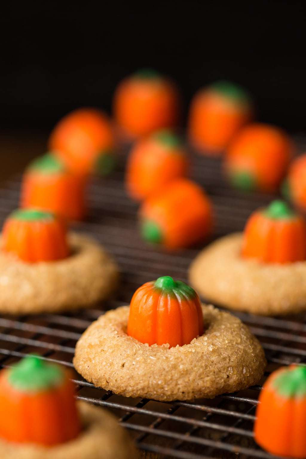 Vertical photo of Pumpkin Shortbread Cookies on a cooling rack with a black background.