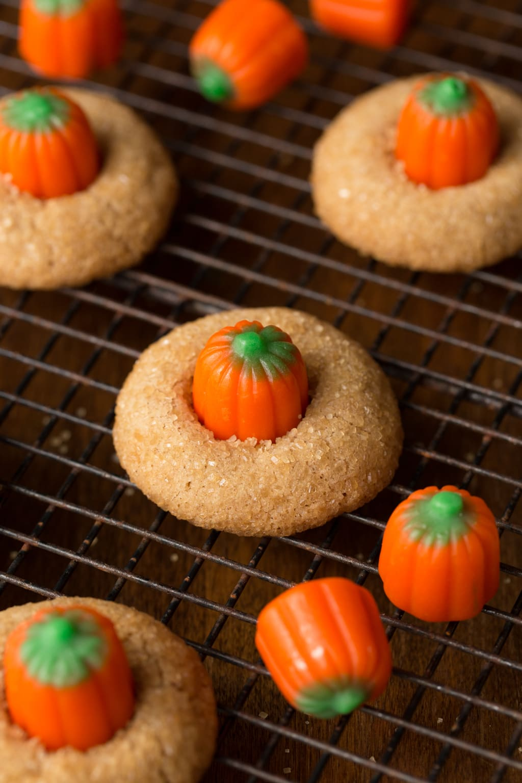Need a delicious, sweet snack for a autumn party or a Halloween celebration? These Pumpkin Shortbread Cookies are the perfect, delicious solution!