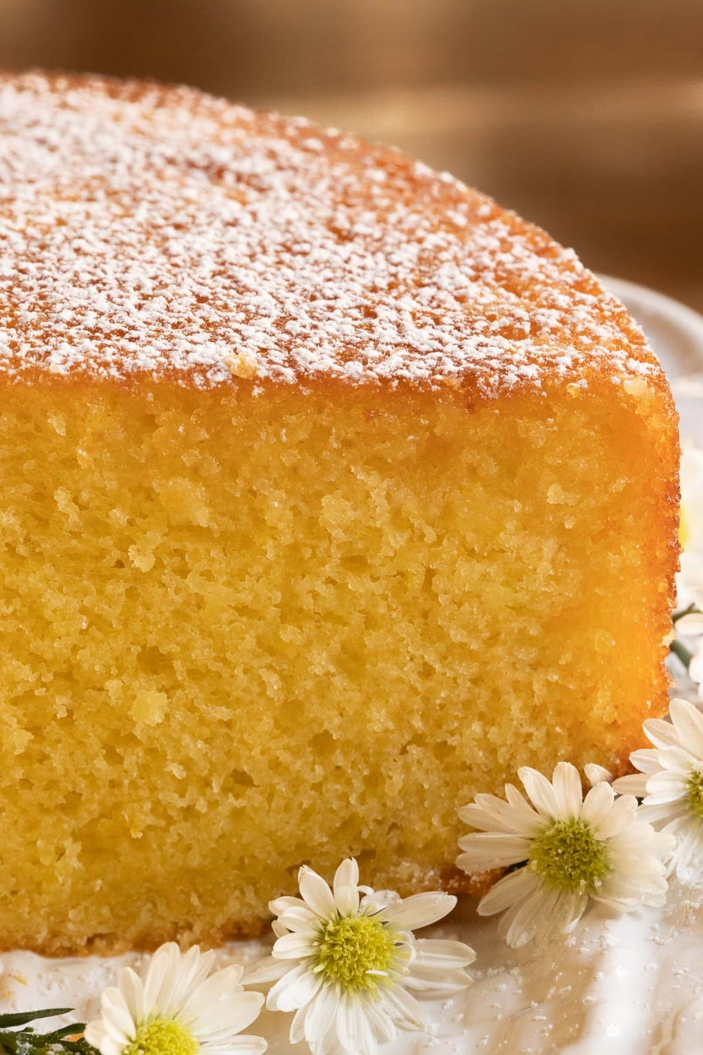 Vertical ultra closeup photo of the inside of a Ridiculously Easy Orange Olive Oil Cake featuring the crumb and decorated with powdered sugar and mini daisies.
