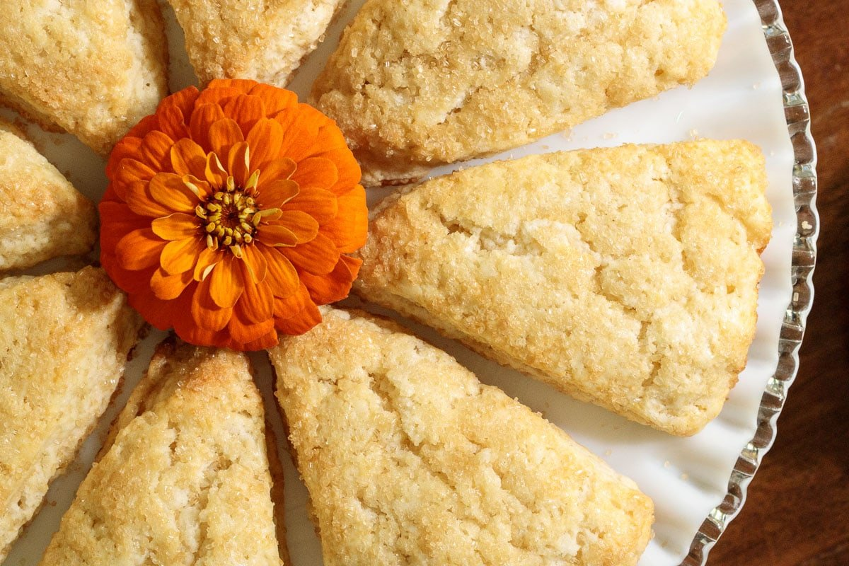 Close up overhead photo of a plate of Sugar Top Scones
