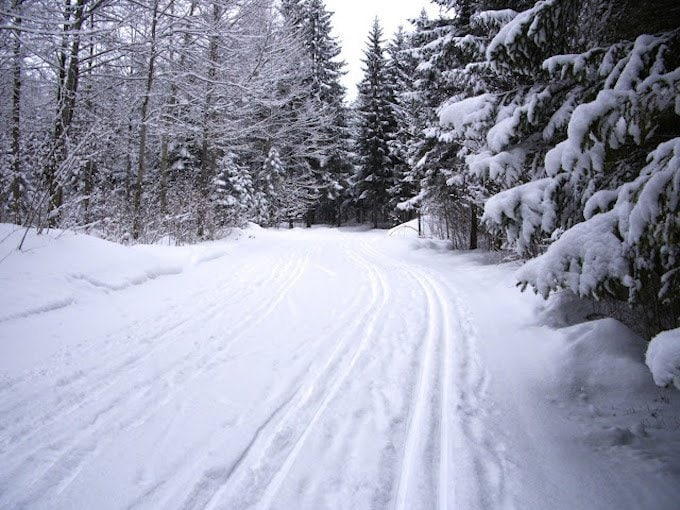 Samoens Cross Country Skiing thecafesucrefarine.com