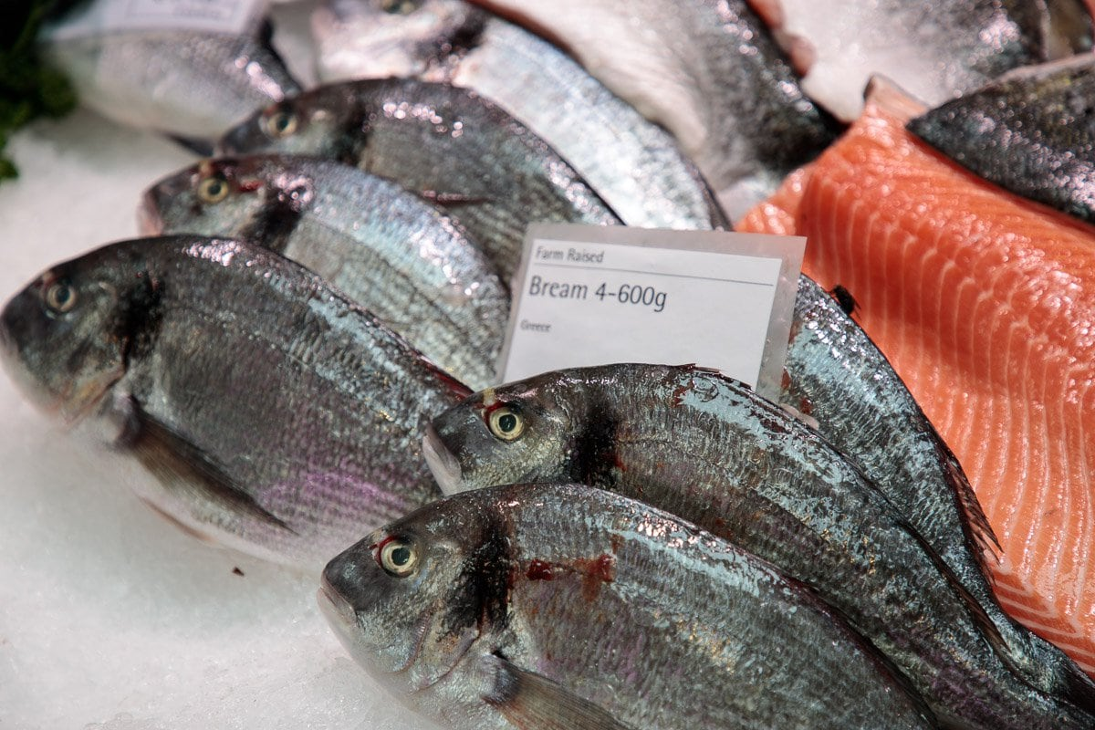 Photo of fresh bream straight off the fishing trawler in Howth.