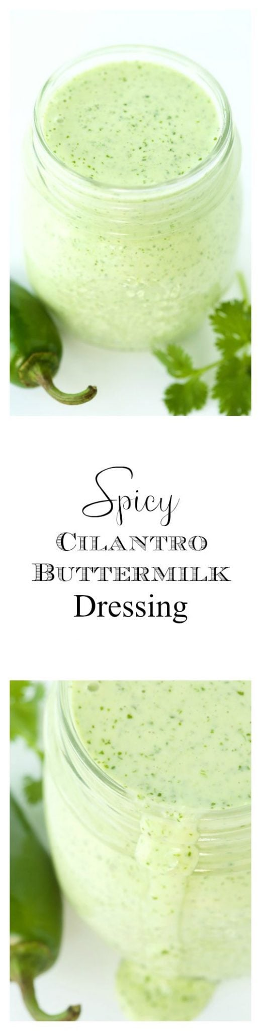 Spicy Cilantro Buttermilk Dressing - the most insanely delicious ...